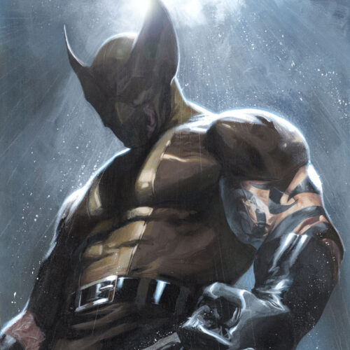 Dark Reign: Wolverine (promotional illustration)